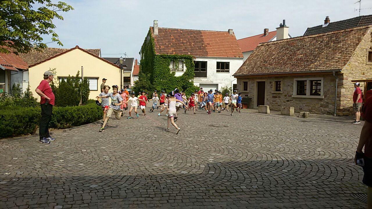 Friedelsheim 7